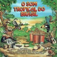O SOM TROPICAL DO BRASIL