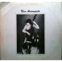 Nico Assumpção 1981