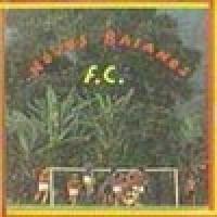 NOVOS BAIANOS FC